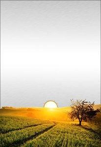 Solar Radiation Research