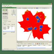 WinDIAS leaf image analysis data