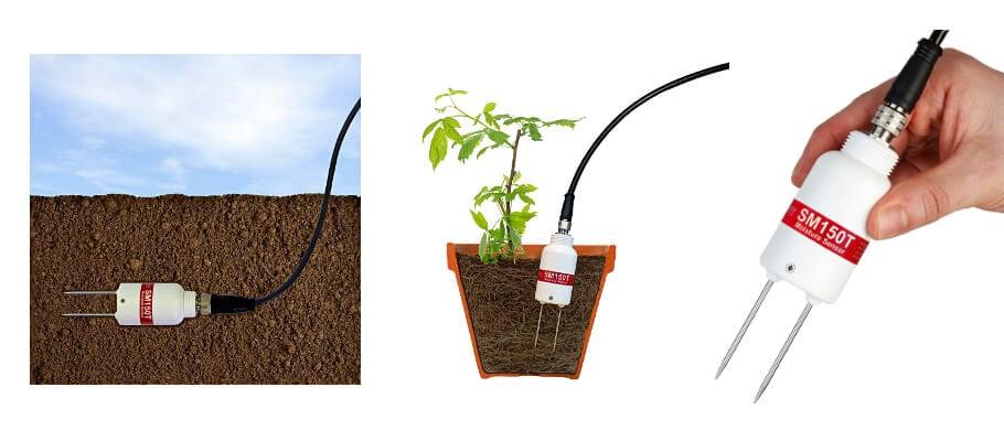 new soil moisture and temperature sensor from delta t. Black Bedroom Furniture Sets. Home Design Ideas