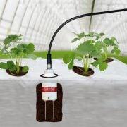 SM150T Soil Moisture Sensor – buried in grow bag